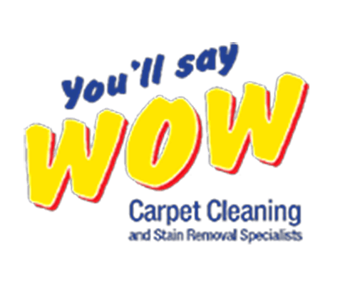 carpet cleaning franchise opportunities